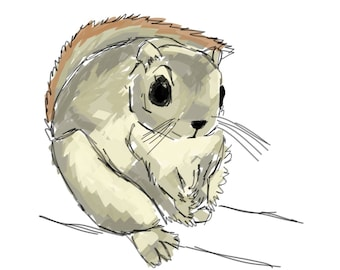 Inktpber #29 2017 - Flying Dwarf Squirrel [PRINT]