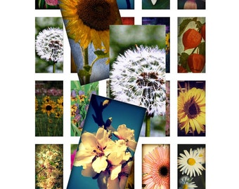 Flower Garden - Instant Download Digital Collage Sheet - 1 Inch X 2 Inch Rectangles - 24 Images