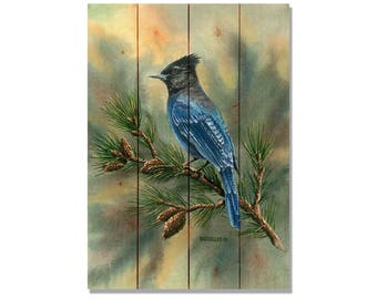 Bartholet's Steller's Jay, Blue Jay Watercolor Bird Print, Print on Wood, Home Decor (DBSJ)