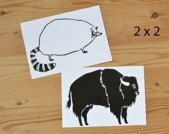 "Postcard set of 4 ""buffalo and racoon"""