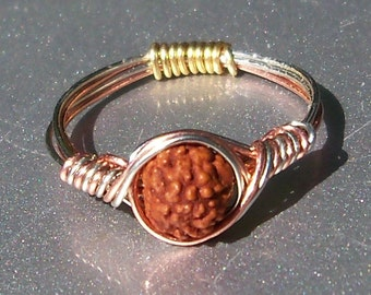 Rudraksh Seed 3 Wire Wrapped Ring
