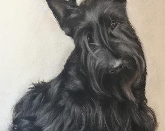 Scottish dog art, scottie terrier, aberdeen Scotland, custom pet portrait, original chalk pastel, scottish terrier painting, collectible,