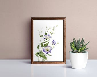 Botanical watercolor digital poster - flower print - printable wall art - floral instant download, watercolour botanical print - eustoma #p6