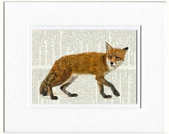 foxy red fox dictionary print