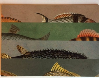 Wood Placemats with Digital LAMOU Print: Fins and Tails Two