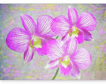 Pink Orchid Flower, Photo Greeting Card, Handmade Card, OOAK Flower Art, All Occasion Card, 5x7 Blank Card, Fine Art Print, Photo Note Cards