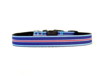 5/8 or 3/4 Inch Wide Dog Collar with Adjustable Buckle or Martingale in Proud Stripes