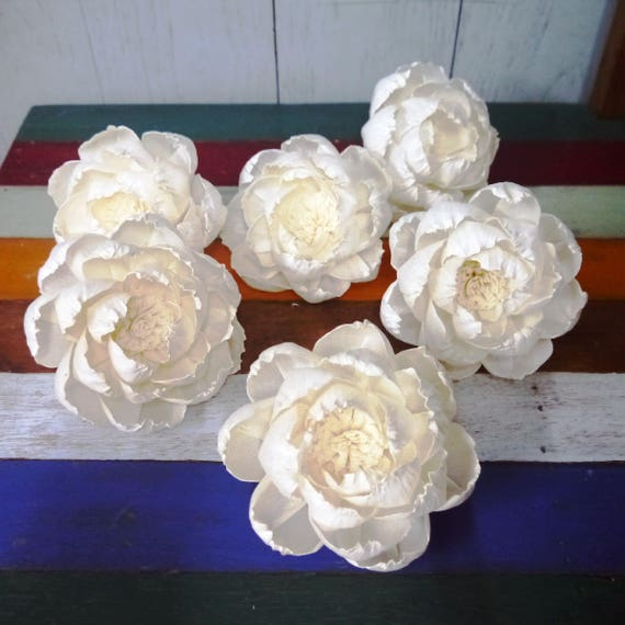 6 Peony Roses Sola Wood Diffuser Flowers With Pollen 10 Cm