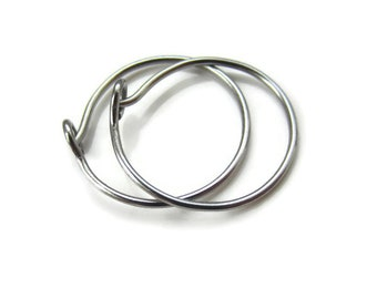Clearance Sale Nickel Free Titanium Hoop Earrings for Sensitive Ear Lobe, Choose size, One Pair