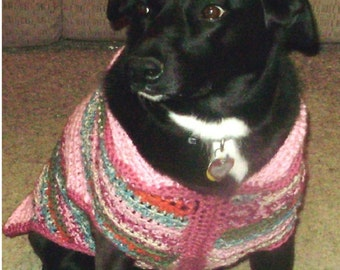 Dog sweater with trim around neck and front