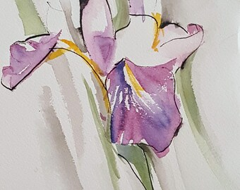 Iris Watercolor and Ink
