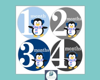 Baby Month Stickers, Baby Shower Gift, Baby Boy Monthly stickers,  Monthly Bodysuit Stickers, Gifts for New Mom, Baby Shower Gift, Penguin