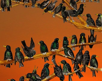 Parliament of Fowles - a Somerset starling roost