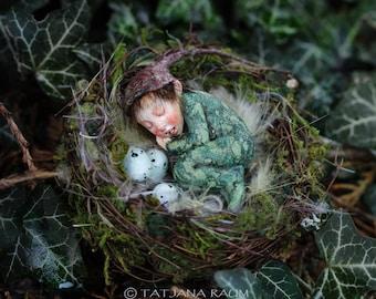 Miniature doll, pixie boy, nest, 1:12 dollhouse size, by Tatjana Raum, art doll, handmade, sculpture