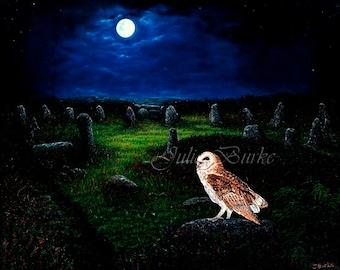 Owl at Tregeseal Stone Circle (Fine Art Giclee Print)