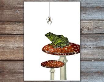Grenouille verte, un décor grenouille sur illustration forêt toadstool. Art rouge araignée, verte impression
