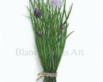 A5 Chives