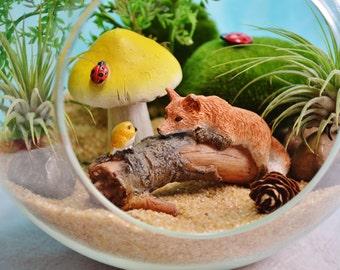 "Fox Bird Terrarium Kit ~ 7"" Air Plant Terrarium Kit ~ Fox and Bird on a Log ~ Fairy Garden ~ Miniature Garden Kit ~ Sand choice ~ Gift"