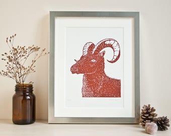 Sheep Linocut Print, original print, Dall sheep linoprint, handmade, limited edition, animal illustration, art, wall decor, brown