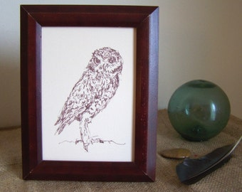burrowing owl - 5X7 line drawing art print