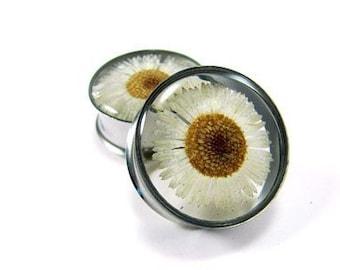 Embedded Daisy Flower Plugs gauges - 7/8, 1, 1-1/8, 1-1/4 inch