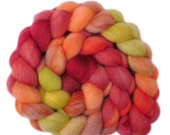 Hand dyed roving -  Blue Faced Leicester (BFL) wool spinning fiber - 4.0 ounces - Youthful Muse