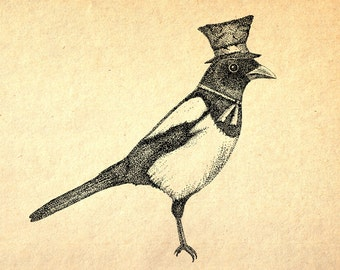 Hello Mister Magpie- A3 bird art print by Jon Turner- pen and ink Victoriana artwork- FREE WORLDWIDE SHIPPING