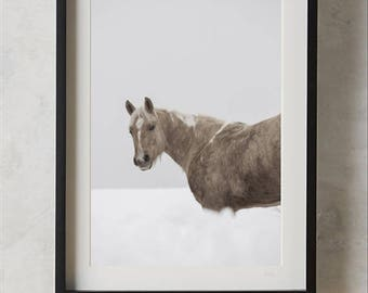 Horse Print, Wall Art Photography, Colour Photo, Large Poster, Modern Minimalist, Boys or Girls Room Decor, Printable Digital Download