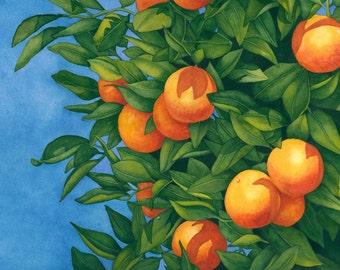 Watercolor painting...SUN KISSED...orange tree...giclee