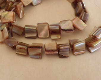 thread 47 a 53 beads 8 mm x 6 mm natural taupe and shell Pearl