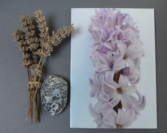 Lilac Hyacinth II, Photographic card, notecard, botanical, flower, natural, for her