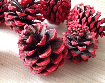 Red Pine Cones / Natural Red Pinecones/Natural Painted Pinecones/Valentine's Day Decor/Wedding Decor/Rustic Wedding/Pinecone Decor/Mantel