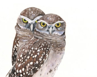 Burrowing Owl Watercolor and Gouache Painting print of watercolor painting A4 size, bird art, wall art, home decor