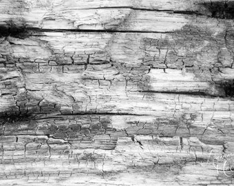 Wood Fine Art Photography Digital Download - Black & White Photography - Stock Photo - Instant Download - Greeting Card - Note Card