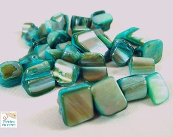 Set of 30 large chips of turquoise dyed shell (pn22)