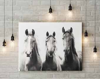 Wild Horses, art print, Horse faces, photograph, Sepia Horses photo, Printable, wall art, Horse decor, black and white, boho horses, boho