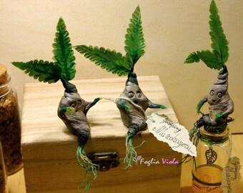 Mandrake Root Apothecary Hogwarts herbology Harry Potter bottle doll Decor Herbism Laboratory Potion Magic Dragon Plant Newborn