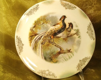 1911 German Porcelain Leucktenburg Antique Transferware Plate Wild Game Birds Trees Scenic Green Luster Hanging Display Hunting Victorian