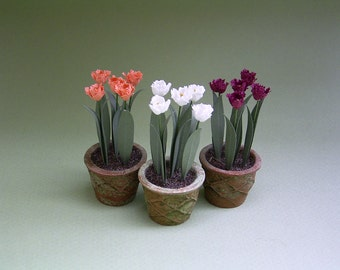 Parrot Tulips Paper Flower Kit  for 1/12th scale Dollhouses, Florists and Miniature Gardens