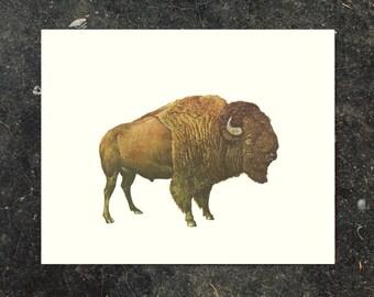BUFFALO ART, Buffalo print, Buffalo wall art, Vintage art, Vintage print, Vintage wall art, Bison art, Bison Print, BISON, mid century art
