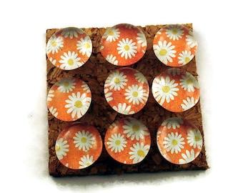 Glass Push Pins   Cork Board Pins  Thumb Tacks Funky Pushpins in Sunny (P94)