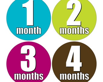 12 Monthly Baby Milestone Waterproof Glossy Stickers - Just Born - Newborn - Weekly stickers available - Design M017-09