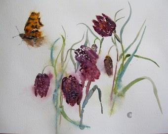 Snakeshead Fritillary with Butterfly/Fritillary and Comma/Fritillaries