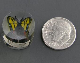 Swallowtail Boro Cane 7 grams - 117 E