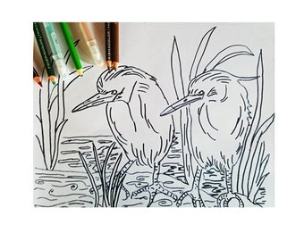 Baby Egrets Coloring Page Pattern DIY Print at home Digital Download, Adult Coloring, Patterns