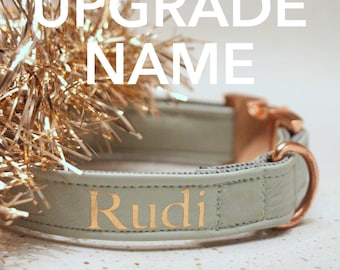UPGRADE NAME - personalize your Prunkhund collar, harness or bandana with your dogs name - print in gold, rose gold or silver