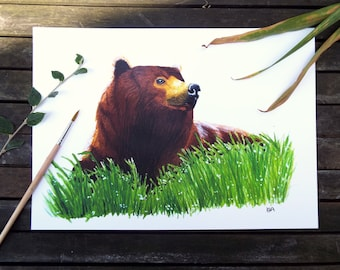 A Grizzly Bear In The Grass Watercolour A4 Print
