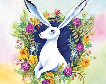 Zajec Tapatapata - Rabbit