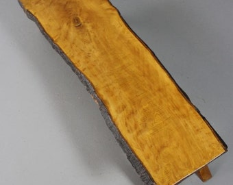 Retro Beech Tree Slice Coffee Table