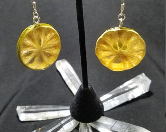 Real Key Lime Earrings